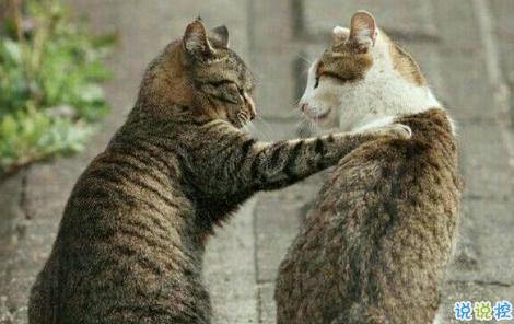 關于朋友的說說現實的句子長篇 你和你朋友認識多久了?2