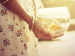 感到难过时有些哀怨的说说 我抵得住孤单和寂寞却抵不住你在我身边的沉默