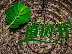 2019植树节微信说说带图片 适合植树节发的的心情说说短语