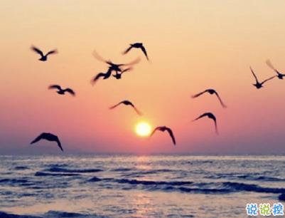 看日出日落的心情说说带图片 欣赏日出日落的句子2