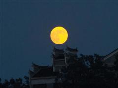 中秋节经典说说大全 2019不一样的中秋节说说