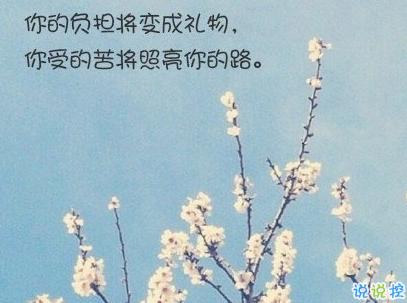 經典文藝短句子帶圖片 越努力越幸運13