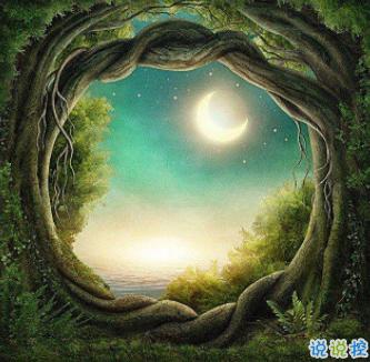 树洞遇见有趣灵魂v1.0.0
