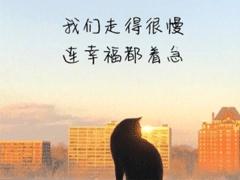 经典文艺短句子带图片 越努力越幸运