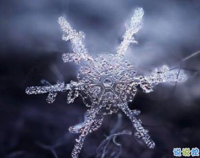 抖音下雪超级火的句子 抖音最美下雪文案1