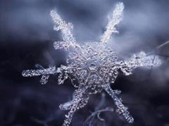 抖音下雪超级火的句子 抖音最美下雪文案