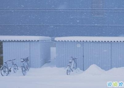 下雪天文艺小句子 下雪了有意境的说说1