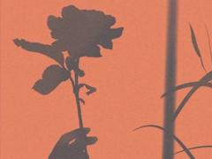 很暖很治愈的短句带唯美图片 打不开的心结就系成蝴蝶结