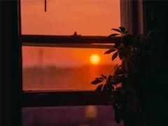 周末早安心语正能量 所有光芒都是努力埋下的伏笔
