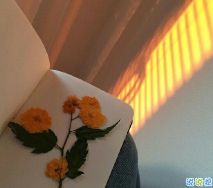 2020七夕浪漫的句子帶圖片 七夕情人節適合表白的情話說說13