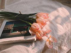 立秋早安88必发带图片一句话短句 今日立秋祝你快乐