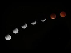中秋节诗意可爱的说说 愿得年年常见中秋月