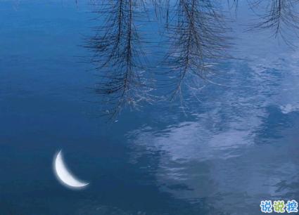 15句惊艳朋友圈的唯美短句 山中若有眠枕的是月14