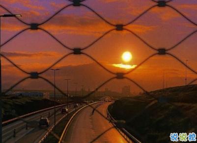2021很有詩意內涵的晚安句子 桐花萬里路連朝語不息4