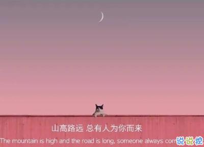 2021很有詩意內涵的晚安句子 桐花萬里路連朝語不息11