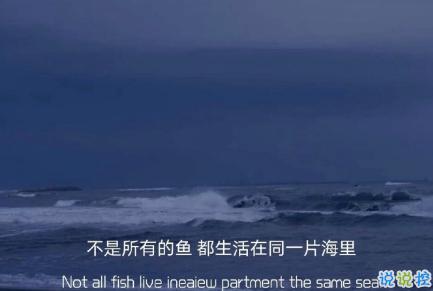 向往大海简短治愈朋友圈文案 描写大海的惊艳文案5