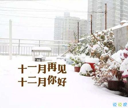 2020十二月来临的惊艳文艺句子 长安十二月月月风花雪2