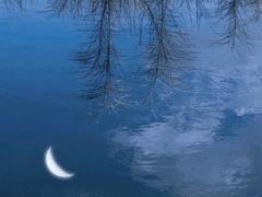 15句驚艷朋友圈的唯美短句 山中若有眠枕的是月