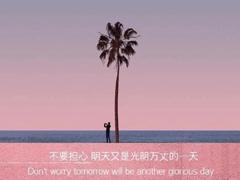 2021很有詩意內涵的晚安句子 桐花萬里路連朝語不息