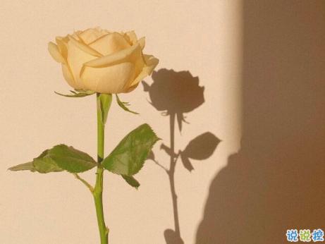 2021跨年夜发朋友圈的秀恩句子 跨年夜最甜美的爱情句子2