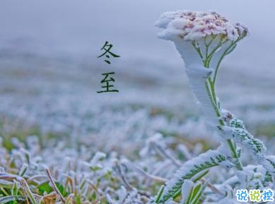 冬至简短发朋友圈寄语带图片 2020冬至朋友圈问候语11