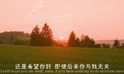 关于春天的优美句子大全 春天出游发朋友圈的唯美句子 好词好句 第2张