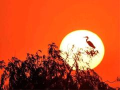 温柔唯美的日落句子带图片 私奔吗在太阳落山前