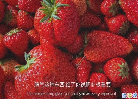 关于遇见的唯美短句带图片 表达遇见的唯美句子11