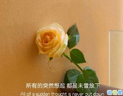朋友圈晒花朵的优美文案 关于晒花朵的朋友圈1