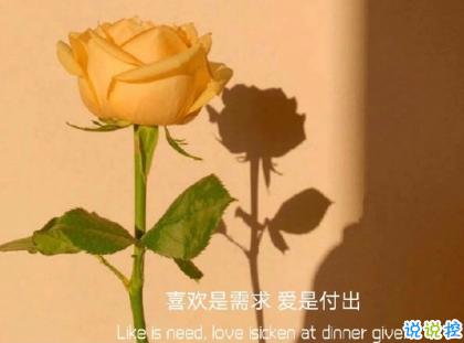 朋友圈晒花朵的优美文案 关于晒花朵的朋友圈3