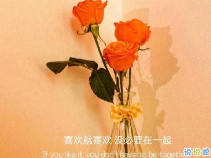 朋友圈晒花朵的优美文案 关于晒花朵的朋友圈4