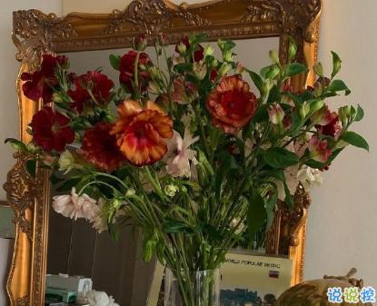 朋友圈晒花朵的优美文案 关于晒花朵的朋友圈12