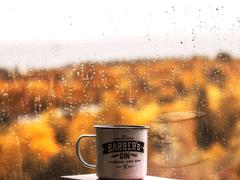 下雨想念一个人的暖心说说 绵绵细雨思念一个人的短句