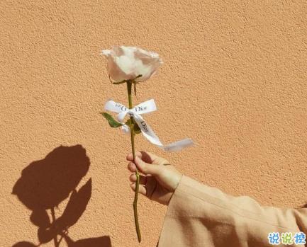 2021给妈妈送花的祝福语 写给妈妈的鲜花祝福语简短1