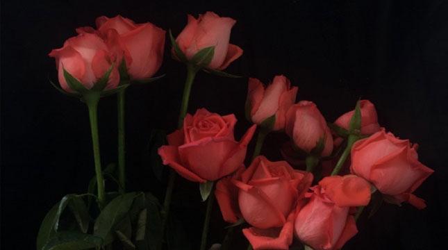 2021让妈妈感动的祝福句子 母亲节感恩妈妈的话