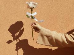 2021给妈妈送花的祝福语 写给妈妈的鲜花祝福语简短