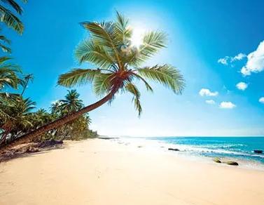 去海边发的文艺说说带图片 最新版的热门海边伴侣圈案牍9