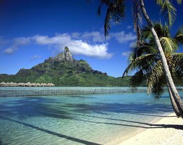 去海边发的文艺说说带图片 最新版的热门海边伴侣圈案牍11