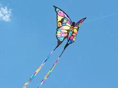 周末出门郊游放风筝的文案 关于放风筝的优美说说