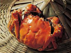 2021秋天吃螃蟹的说说 秋季吃螃蟹发朋友圈的文案
