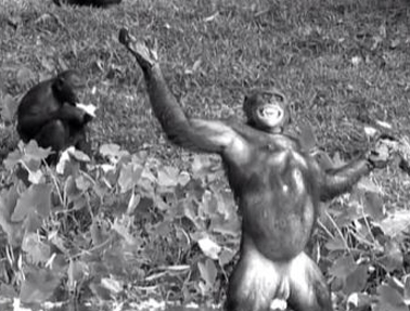 最近很火的18000年前猿人的搞笑文案带图片 让人意想不到的沙雕句子3