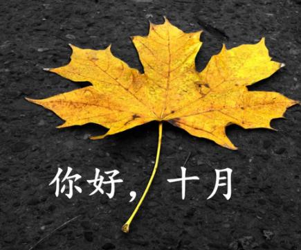 九月再见十月你好唯美句子 2021十月你好唯美励志语录1