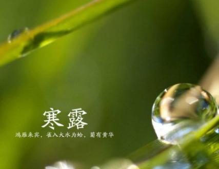 2021寒露节气发朋友圈的文案 寒露节气早安祝福语1