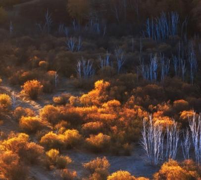 秋季降温的文案带图片 秋季降温问候语的文案15