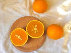 秋季摘橘子的朋友圈文案 秋季去橘子园摘橘子的唯美说说